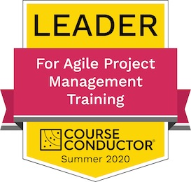 Agile Project Management Leader